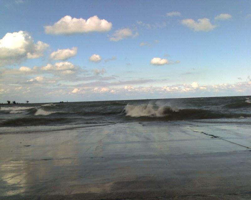 Waves_oak_st3